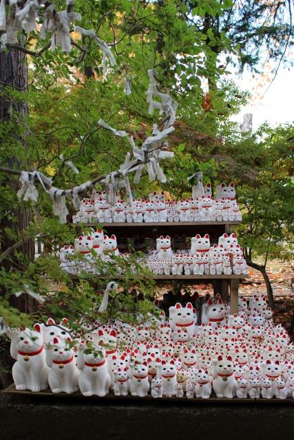 豪徳寺に奉納された大量の招き猫